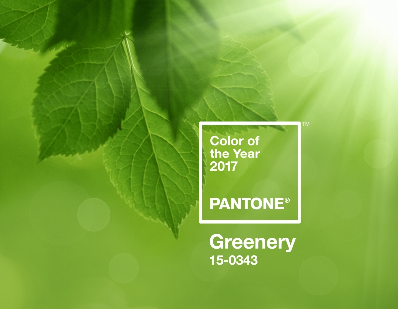 pantone colour of the year interior design edinburgh